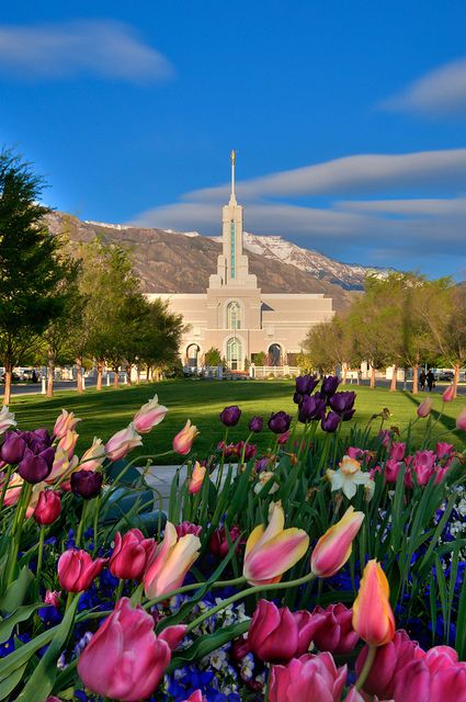 Mount Timpanogos Utah LDS Temple by Adams Attempt via Flickr.I want to go see this place one day.Please check out my website thanks. www.photopix.co.nz
