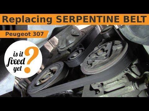 Replacing Serpentine Belt Peugeot 307 Youtube Alternator Peugeot Car Fix