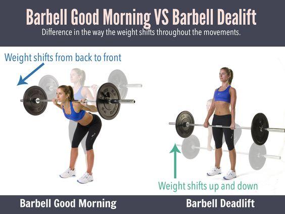 Good Mornings vs Deadlifts