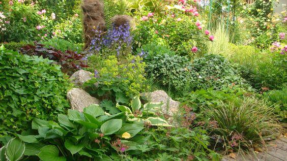 Schattengarten - Wohnen und Garten Foto u2026 Pinteresu2026 - vorgarten anlegen nordseite