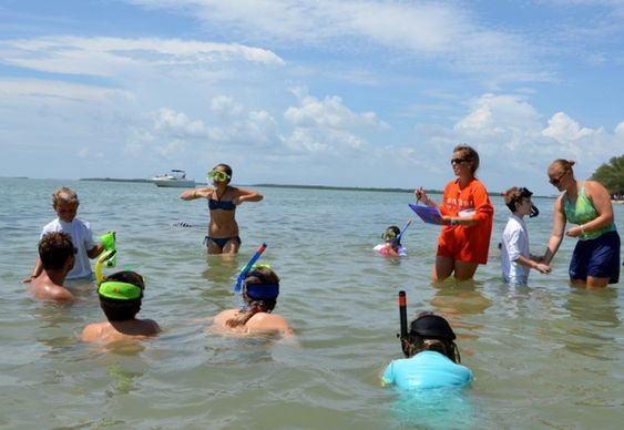 9 Fun Things to Do on Sanibel & Captiva Islands with Kids: Enroll in Sea School