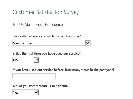 Raj Excel Customer satisfaction survey Excel Online Template - customer survey template word