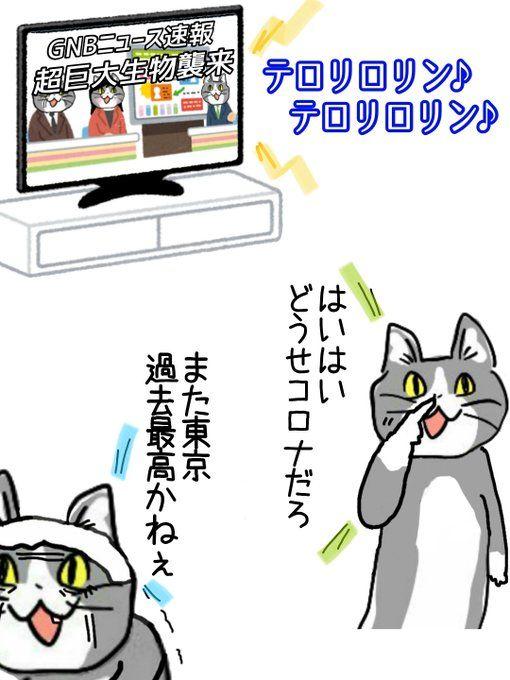 面白い写真 おしゃれまとめの人気アイデア Pinterest Hiro 2021 面白い写真 コラ画像 猫