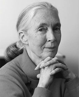 Jane Goodall - Primatologist, ethologist, anthropologist, and UN Messenger of Peace