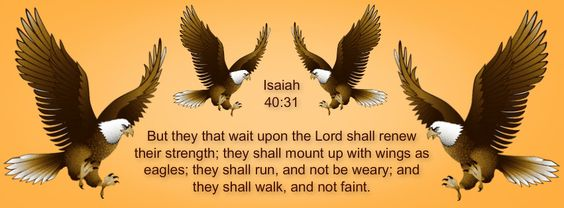Isaiah 40:31 But they that wait upon the Lord shall renew their strength; they shall mount up with wings as eagles; they shall run, and not be weary; and they shall walk, and not faint. ♥