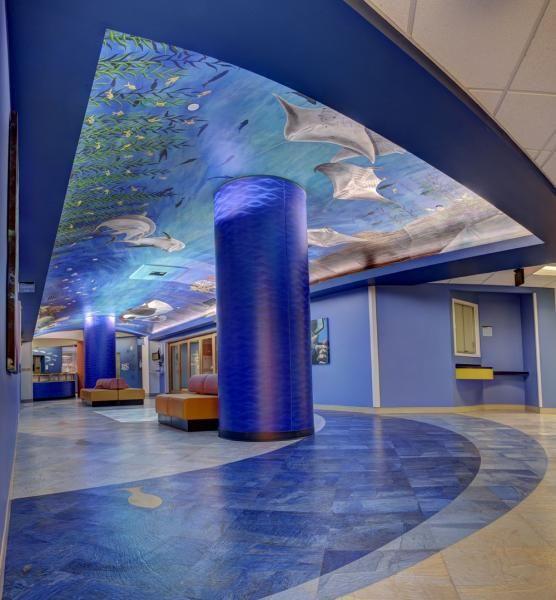 Beautiful installation at public space children 39 s for Blue fish pediatrics