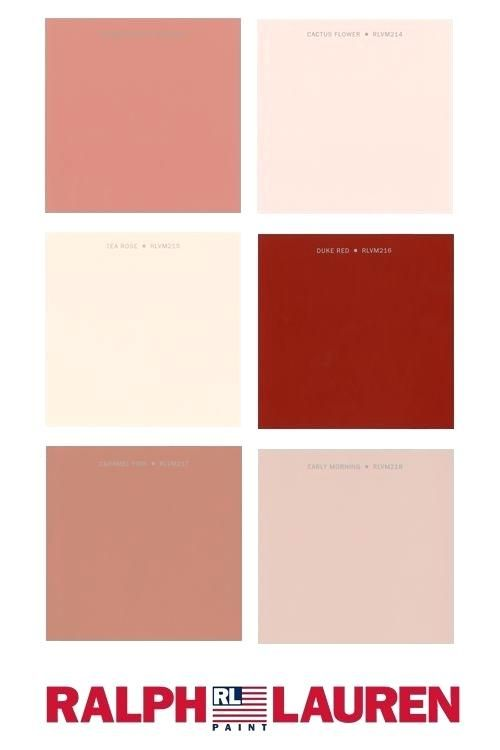 Salmon And Grey Color Scheme How To Work With Salmon Paint Shades Such As Apricot Peach And Terracotta Salmon And Grey Color Scheme Paint Shades Color Schemes