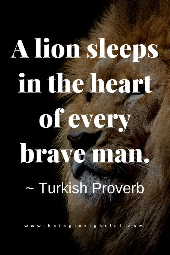 beinginsightful Quote- Quotes, Life Quotes, Relationship Quote, Inspirational Quotes, Motivational Quote. #turkishproverb #bravequote #brave #beinginsightful