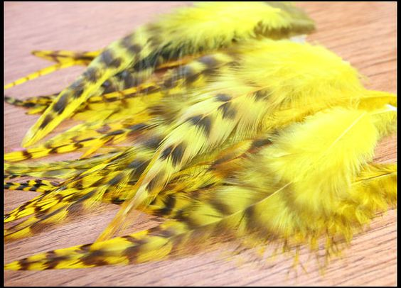 Hey, I found this really awesome Etsy listing at https://www.etsy.com/listing/79131253/yellow-craft-feathers-colored-feathers