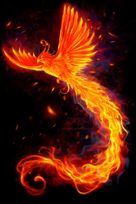 """""""Immortal Flames"""" par Christos Karapanos"""