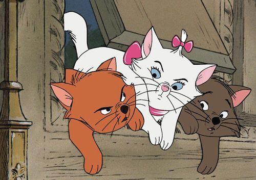 33 Ide Nama Karakter Disney Dan Animasi Untuk Kucing Peliharaan Gerava Ikan Hias Burung Kicau Kucing Anjing Di 2020 Karakter Disney The Aristocats Animasi