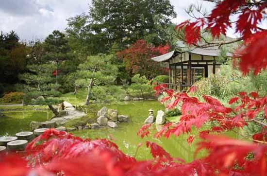 www.bonsai-haus.de