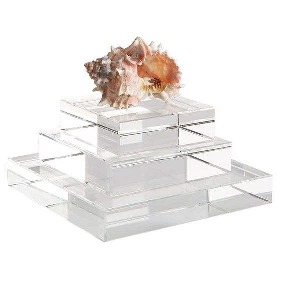 Glass Risers to display seashells and coral.