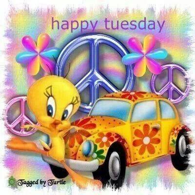 Happy Tuesday!: