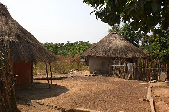 jungle village - Google Search