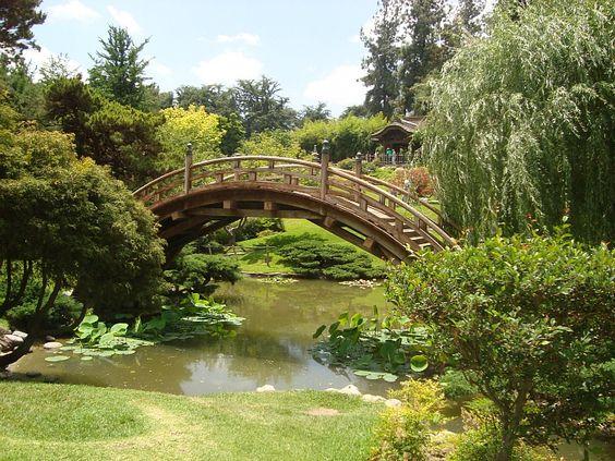 Huntington botanical gardens in pasadena california - Livin pasadena ...