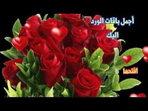 حالات واتساب اجمل باقات الورد العالمية اليك هدية مع دعاء يريح القلب Youtube Rose Plants Flowers