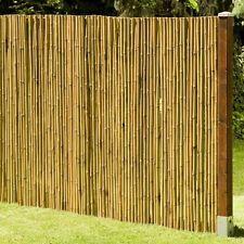 Sichtschutz Aus Bambus Macao Bambusmatte Gartenzaun Zaun ... Bambus Im Garten Tipps