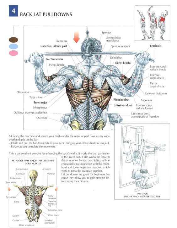 Behind the Neck Lat Pulldowns....go to the chest if you suffer from neck complaints or your flexibility is not so good