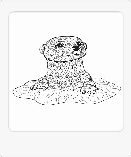 Cute Animals Birds Cute Animals Horses Cute Animals Sloth Animal Coloring Pages Zoo Animal Coloring Pages Zoo Coloring Pages