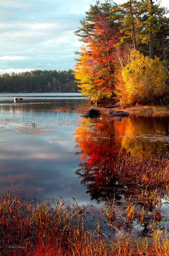Un paysage à couper le souffle... Que de belles couleurs dans la nature...