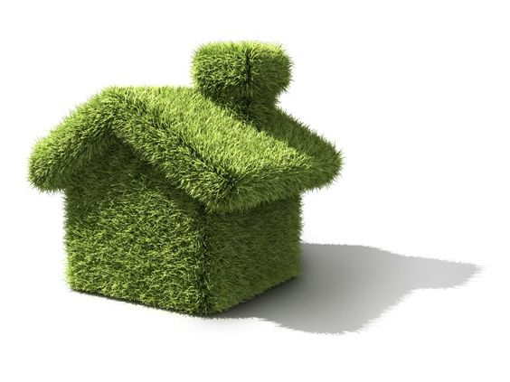 go green with these environmentally friendly home renovation tips