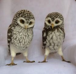 Amazing needle felted owls by Helen Priem.
