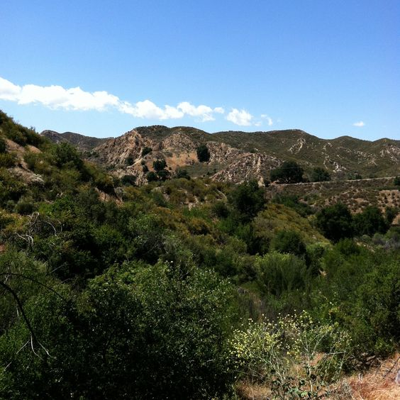 Placerita Canyon State Park, near Santa Clarita, California.