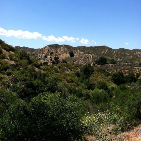 Placerita Canyon State Park, near Santa Clarita, California.