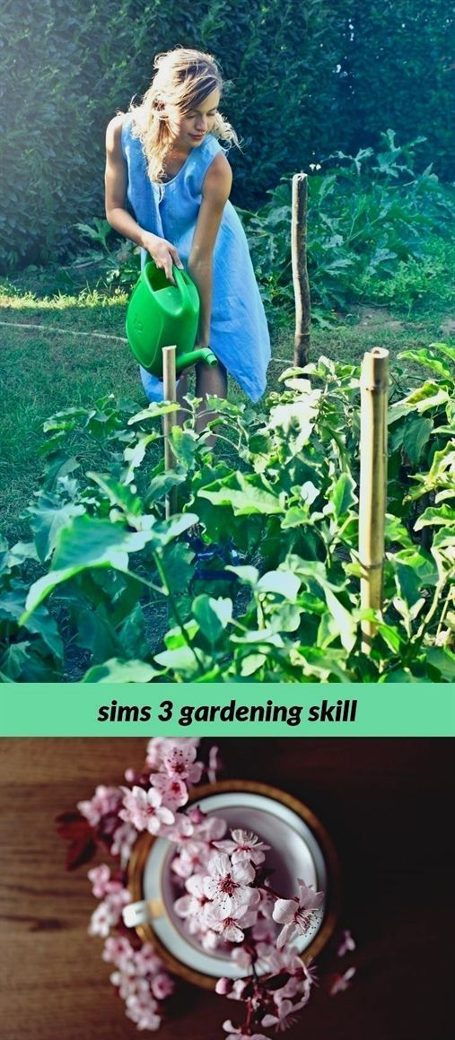 4ad9bdd147b63e6804f7f315bdd28e8d - How To Learn Gardening Sims 3