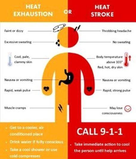 Heat Exhaustion VS. Heat Stroke | EMT/Paramedic ...