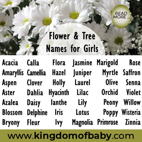 Rose Meaning Of Name Origins And Personality Kingdom Of Baby Flower Names For Girls Names With Meaning Girl Names