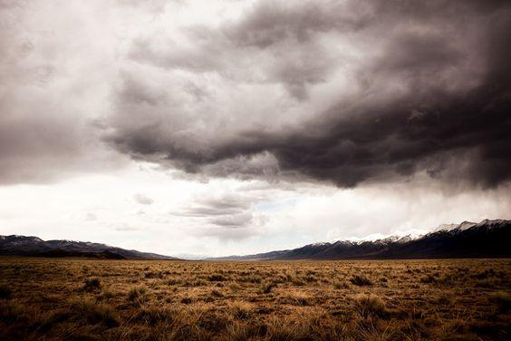 Allen Birnbach - landscapes