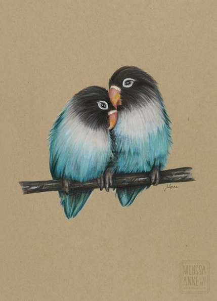 Drawing Ideas Colorful Paper 45 Ideas Color Pencil Art Bird Drawings Love Birds Painting