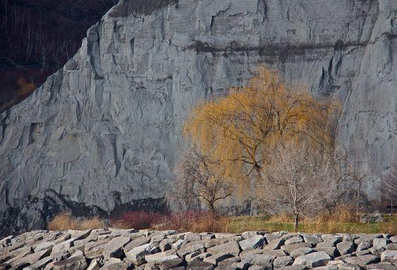 Scarborough Bluffs Park, Toronto, ON M1N 3Z5, Canada