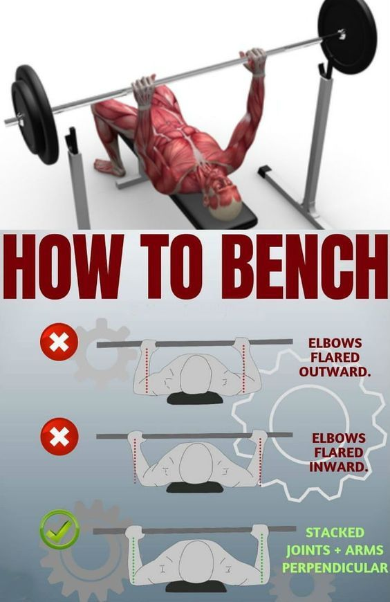 How To Improve Your Bench Press Mighty Infographics Bench Press Bench Press Program Pressing