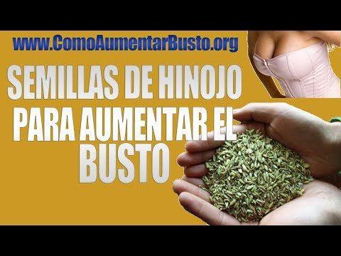 plantas+medicinales+para+aumentar+el+busto