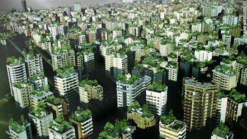 Wonder Forest @ Beirut