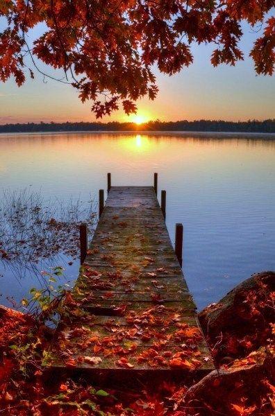 Der Herbst kommt, mit all seinen prächtigen Farben und Düften! #Ferien #Ferienhäuser #Herbst