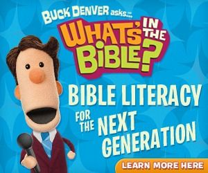 What's in the Bible review flashcards that help reinforce these awesome DVDs