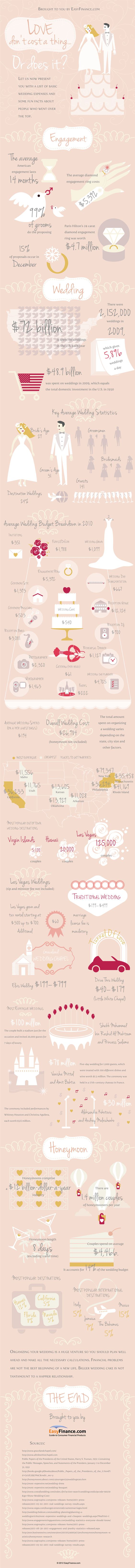 Wedding Budget Infographic