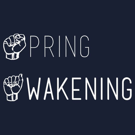 Spring Awakening Deaf West American Sign Language by Katherine Kaplan #SpringAwakening