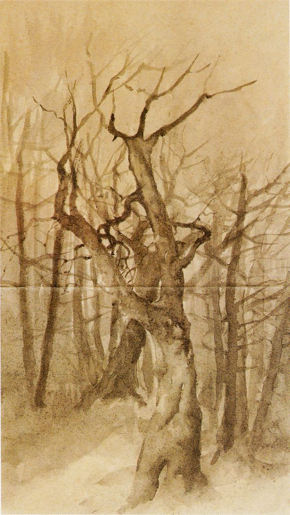 Ovidio Murguía - Árbores no inverno; data descoñecida.