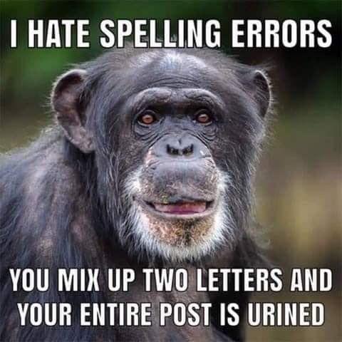 Viney Holiday Properties Monkeys Funny Funny Good Morning Quotes Morning Quotes Funny