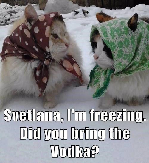 Svetlana, I'm freezing. Did you bring the Vodka?
