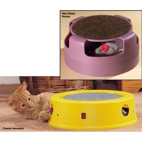 Cheese Mountain Motion Activated Cat Toy Want Additional Info Click On The Image This Is An Affiliate Link Cattoys Cat Toys Pet Toys Toys
