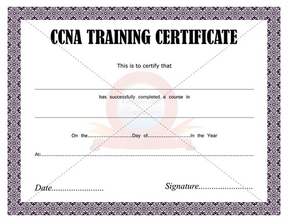Ccna Training Certificate Http://Networkexpert.Co/Ccna.Html