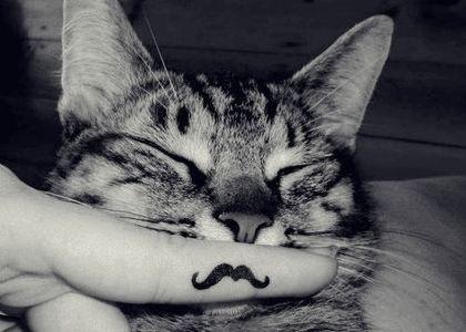 Mustache.