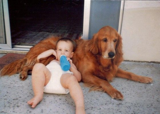 In nowadays, many parents are happy that their kids have the opportunity to have a dogs. children and dogs are the best of friends, as close as siblings and love each other unconditionally. This will be an amazing experience in your baby's life. The following 24 photos that demonstrate that dogs and babies are best friends.: