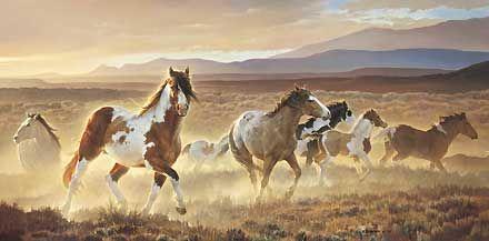 Des chevaux indiens !! magnifique !!
